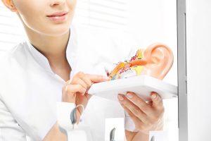 Model of inner ear for hearing test
